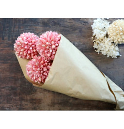 Flowers a snow ball PINK (3...