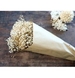 Fiore essicato lungo 77 cm...